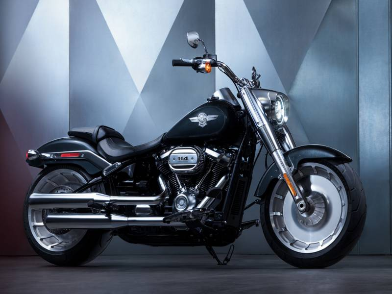2-SOFTAIL-fat boy.jpg